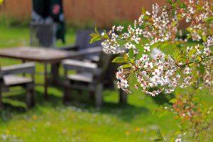 Umweltfreundliche Gartenmöbel